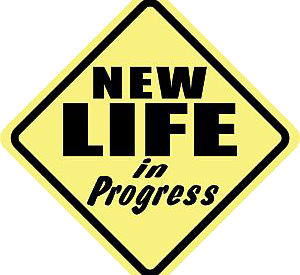 new_life_in_progress